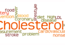 Rebutting the cholesterol hypothesis
