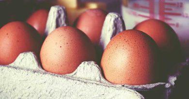 Eggs, cholesterol & CVD