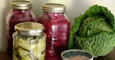 prebiotics www.zoeharcombe.com