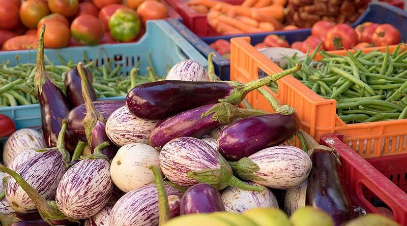 Plant based diet propaganda – Part 2 – Zoë Harcombe