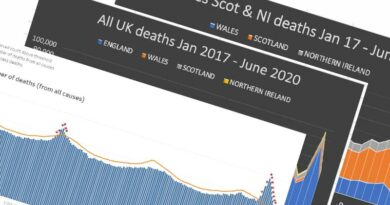 COVID-19 – deaths & excess deaths