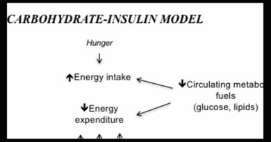 The Carbohydrate Insulin Model of Obesity